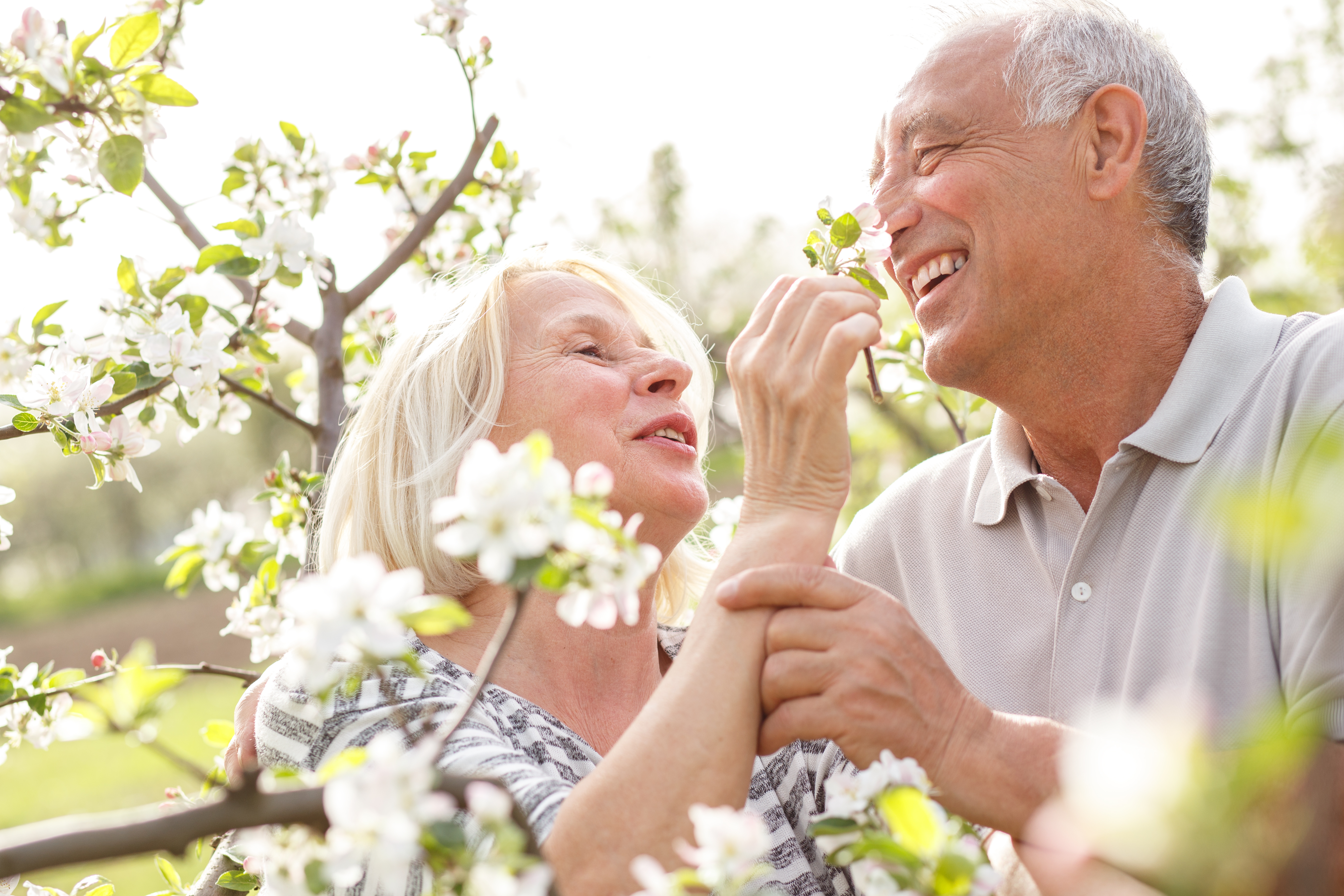 Can Dementia Be Linked To Your Sense of Smell?